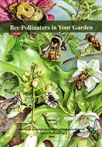 Bee Pollinators in Your Garden